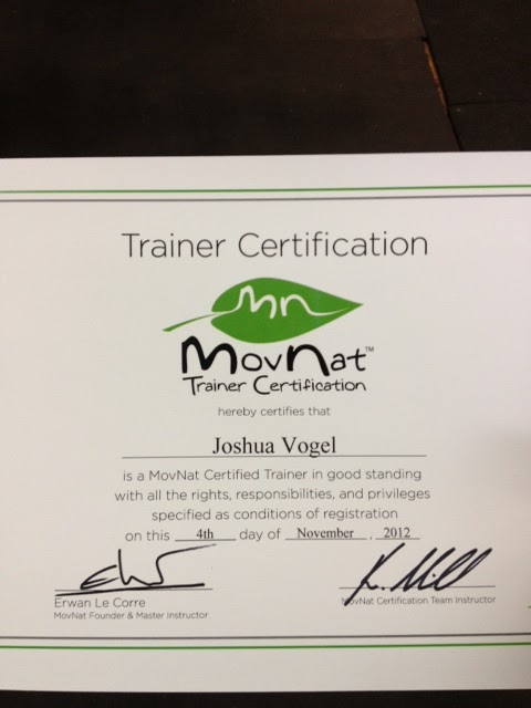 My Movnat Certification Experience Josh Vogel Art