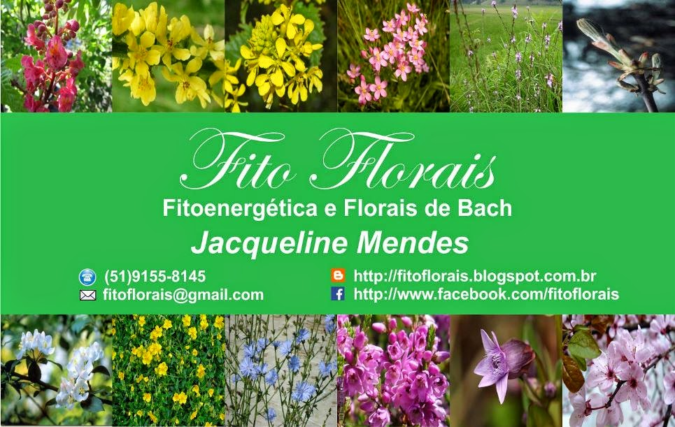 Fito Florais
