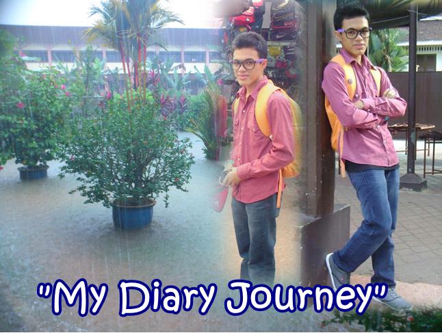 My Diary Journey