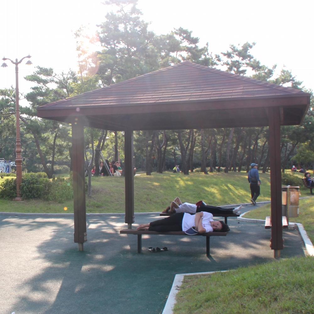 Mujeres coreanas durmiendo en un parque