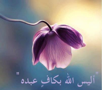 ajmal kalam _ من أجمل كلام الحكماء_