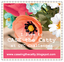 CASE-ing the Catty Challenge site
