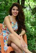 New actress Aarti Chhikara glam pics-thumbnail-14