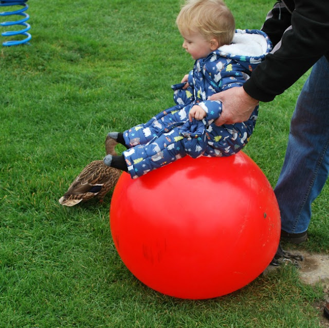 Baby sat on red ball with a duck by his feet