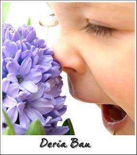 Deria bau menggunakan organ hidung