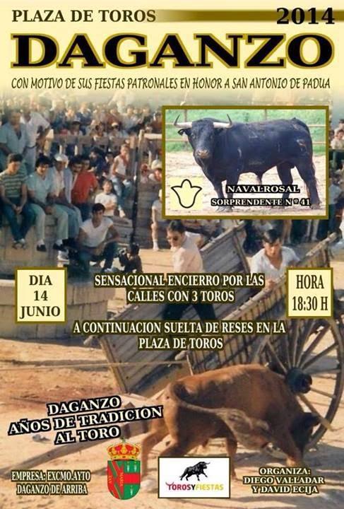 Fiestas san antonio padua 2014 daganzo de arriba madrid - Daganzo de arriba ...