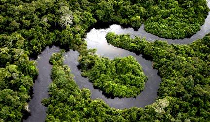 5 de Setembro - Dia da Amazônia.