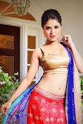 Ranjana Mishra Glamorous photos-thumbnail-6
