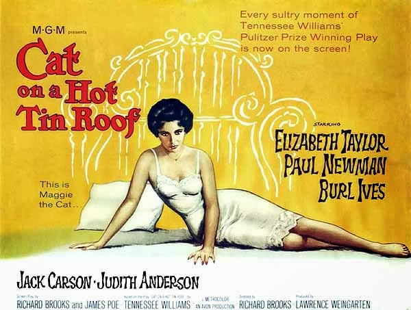 cat on a hot tin roof 3 essay Lying explored in cat on a hot tin roof essaysmendacity is a system that we live in liquor is one way out and death.