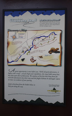 Discovery Trail Diamond Fork Youth Forest in Spanish Fork Great Trails for Kids Utah