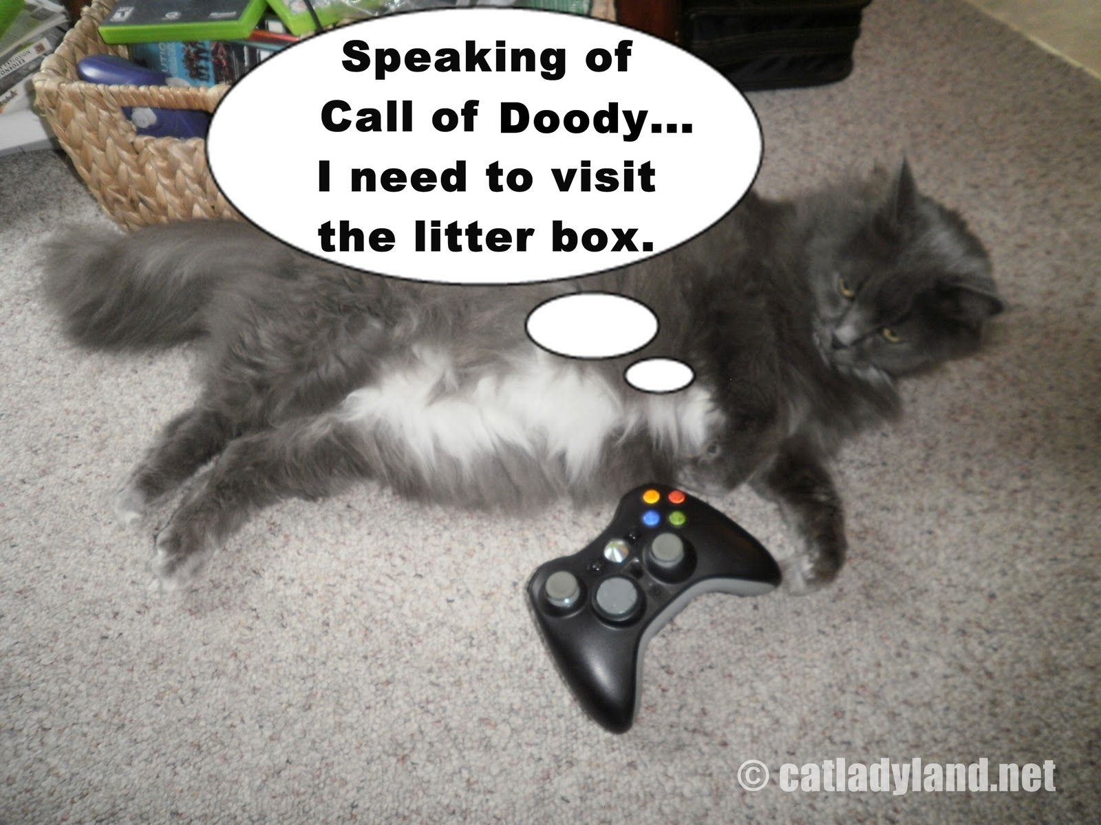 Cats Playing Video Games