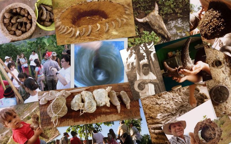 Biodinámica Costa Rica