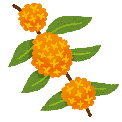 金木犀のイラスト(花)