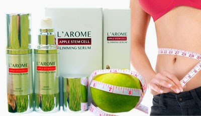 Cik Bebeq Beauty Shop : L'AROME - APPLE STEM CELL SLIMMING ...