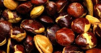 manfaat steroid bagi kulit