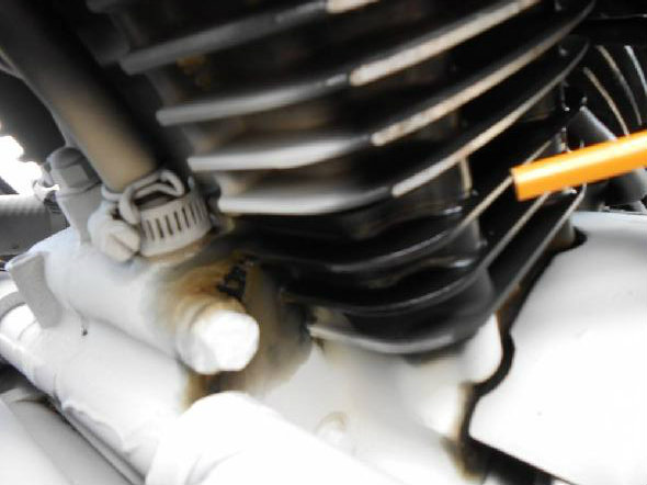 Kawasaki Vulcan Nomad  Oil Leak