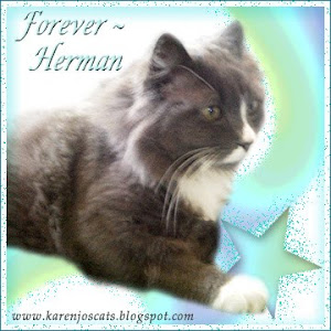 RIP Herman