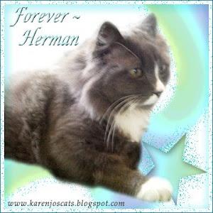 RIP Herman