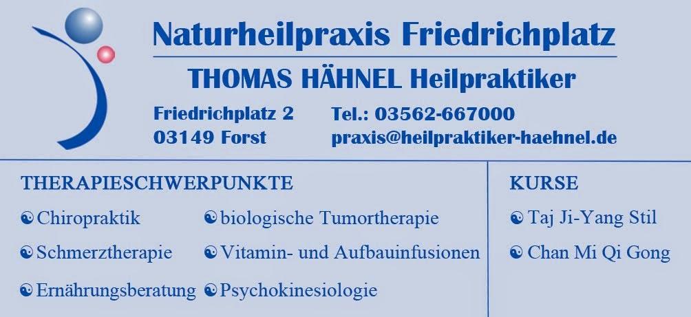 Naturheilpraxis Friedrichplatz