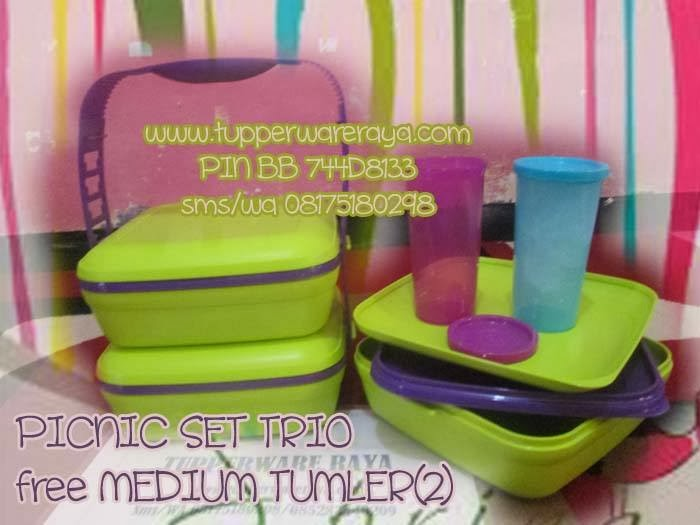 tupperwareraya,tupperware murah,Tupperware Picnic Set Trio Free Medium Tumbler