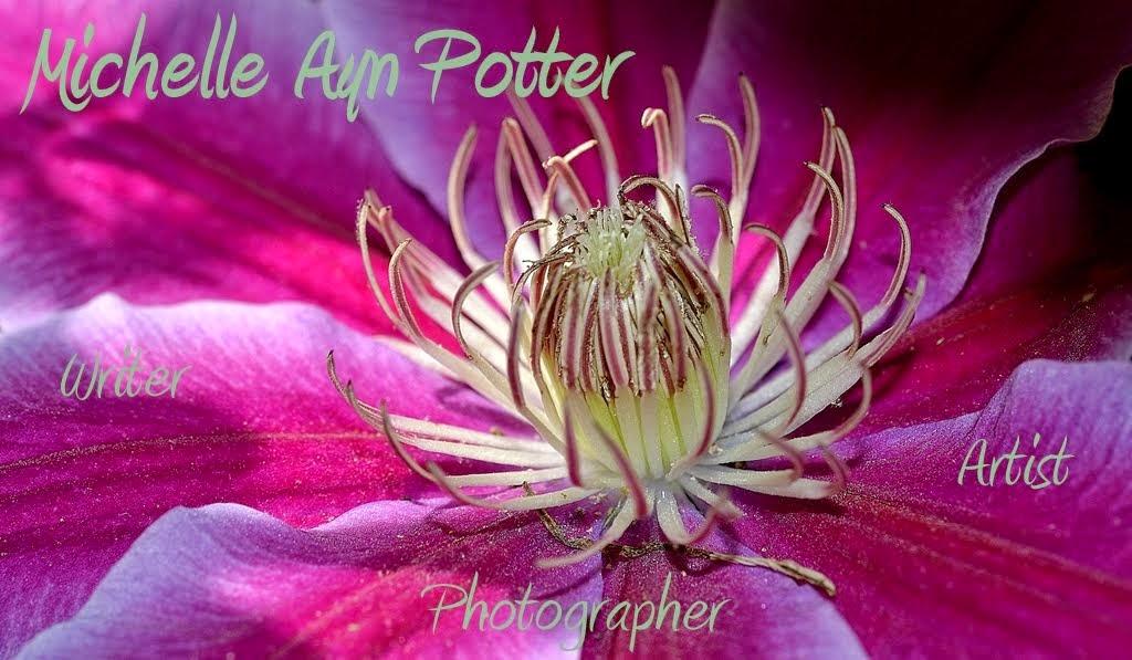Michelle Ayn Potter