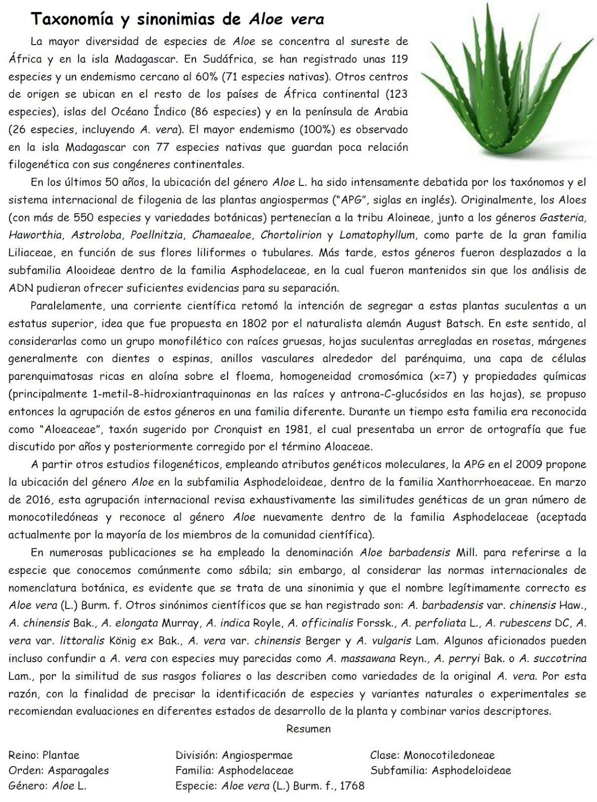 Taxonomía y términos científicos en Aloe