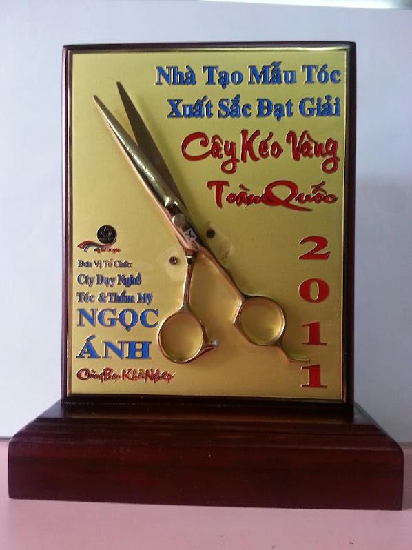 cây  kéo vàng toàn quốc  2011