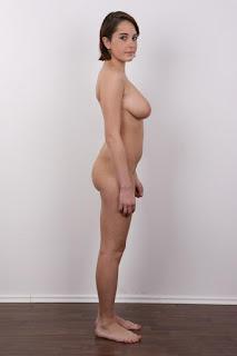 Nude Art - sexygirl-HillaryClinton00071-701861.jpg