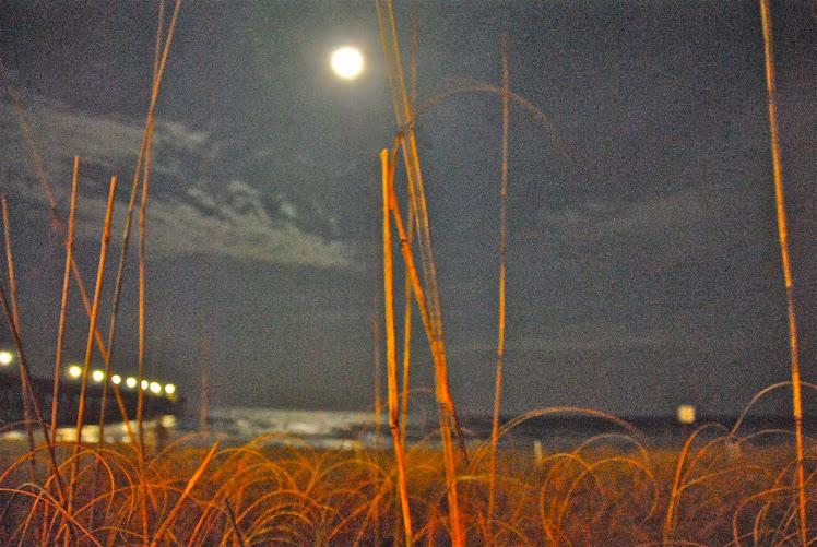 carolina full moon