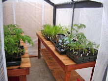 Recycled Fence Greenhouse Tables
