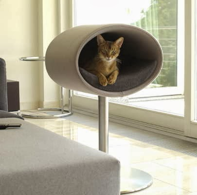 tu organizas cama de gato. Black Bedroom Furniture Sets. Home Design Ideas