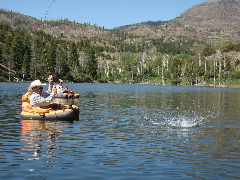 Southern utah fly fishing quiet fly fisher guide service for Best fishing in utah