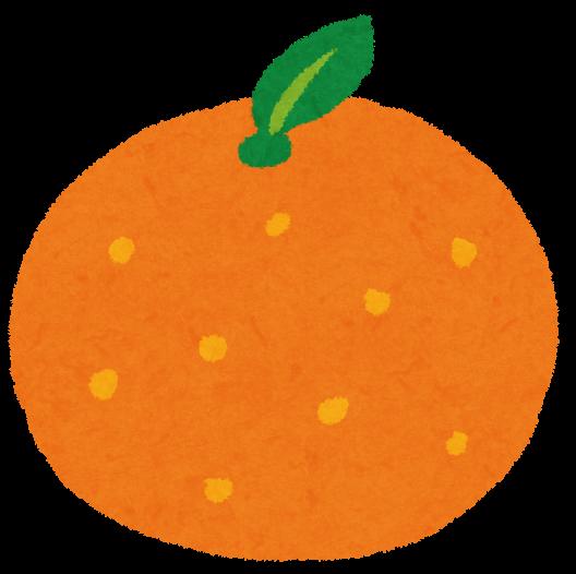管理人 橙(orange)