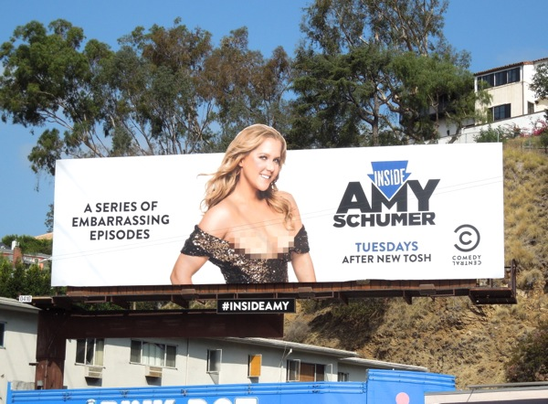 Inside Amy Schumer billboard