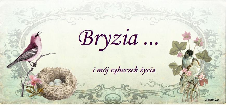 Bryzia