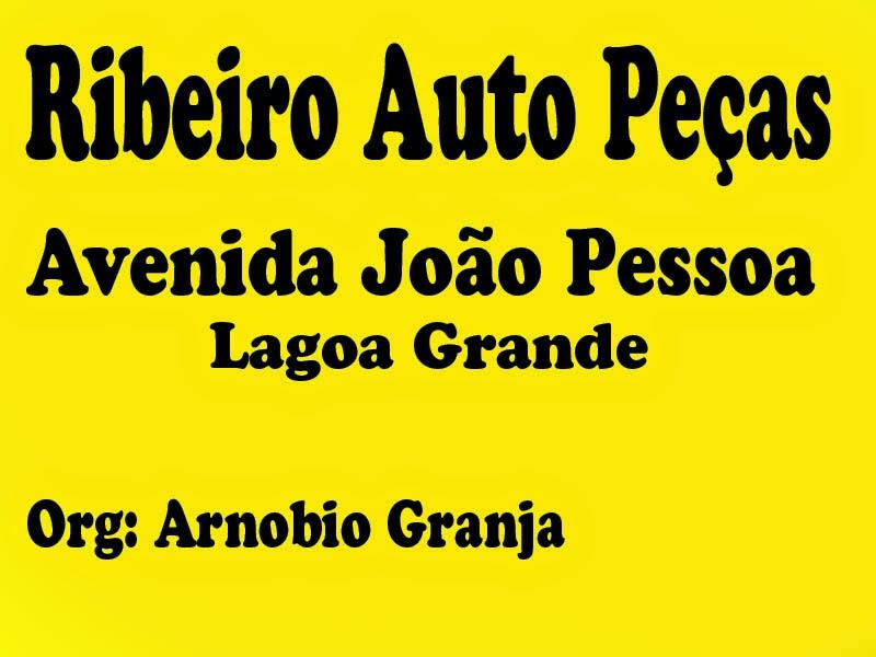 RIBEIRO AUTO PEÇAS