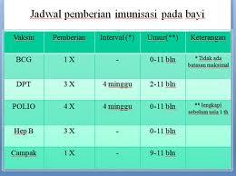 Jenis Dan Manfaat Imunisasi Bagi Bayi Terlengkap