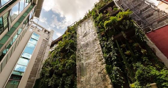 Todo sobre construcci n el jard n vertical m s grande del - El jardin vertical ...