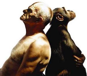 Entre Homens e Monkeys Sempre Haverá os