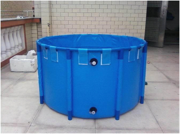 Catfish Farming In Plastic Fish Tanks And Concrete Tanks