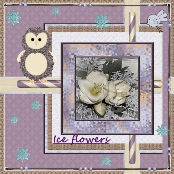 Jan.2016 – Ice flowers.,