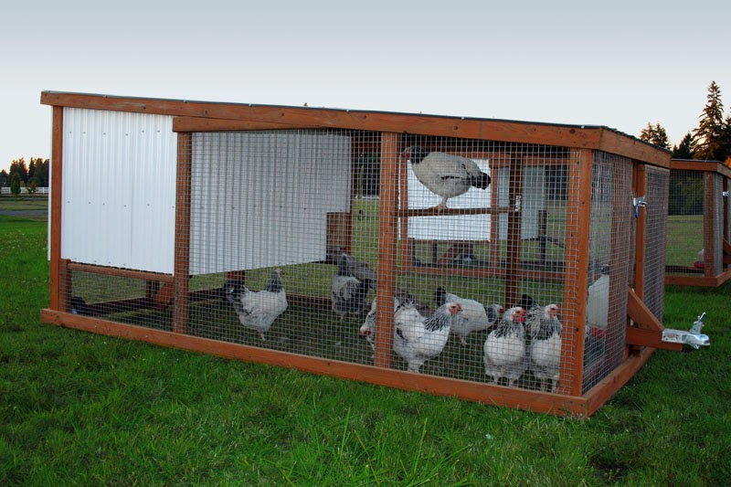 Chicken house plans chicken coop design plans for Mobile chicken coop plans