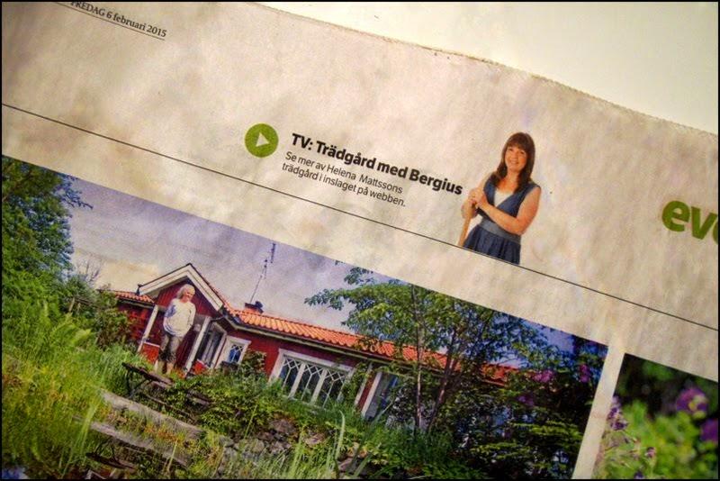 Reportage i Eskilstuna Kurirens helgbilaga Evelina