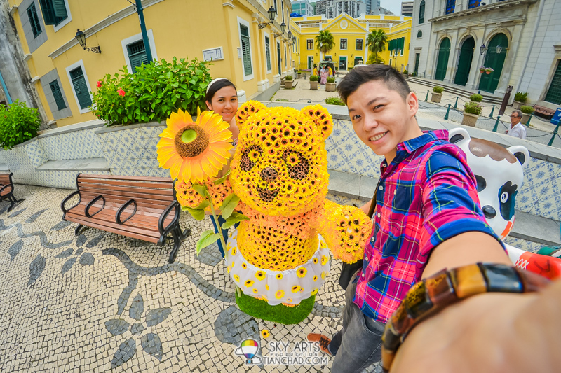 Found Sunflower bear around Catedral de Macau 澳门主教座堂