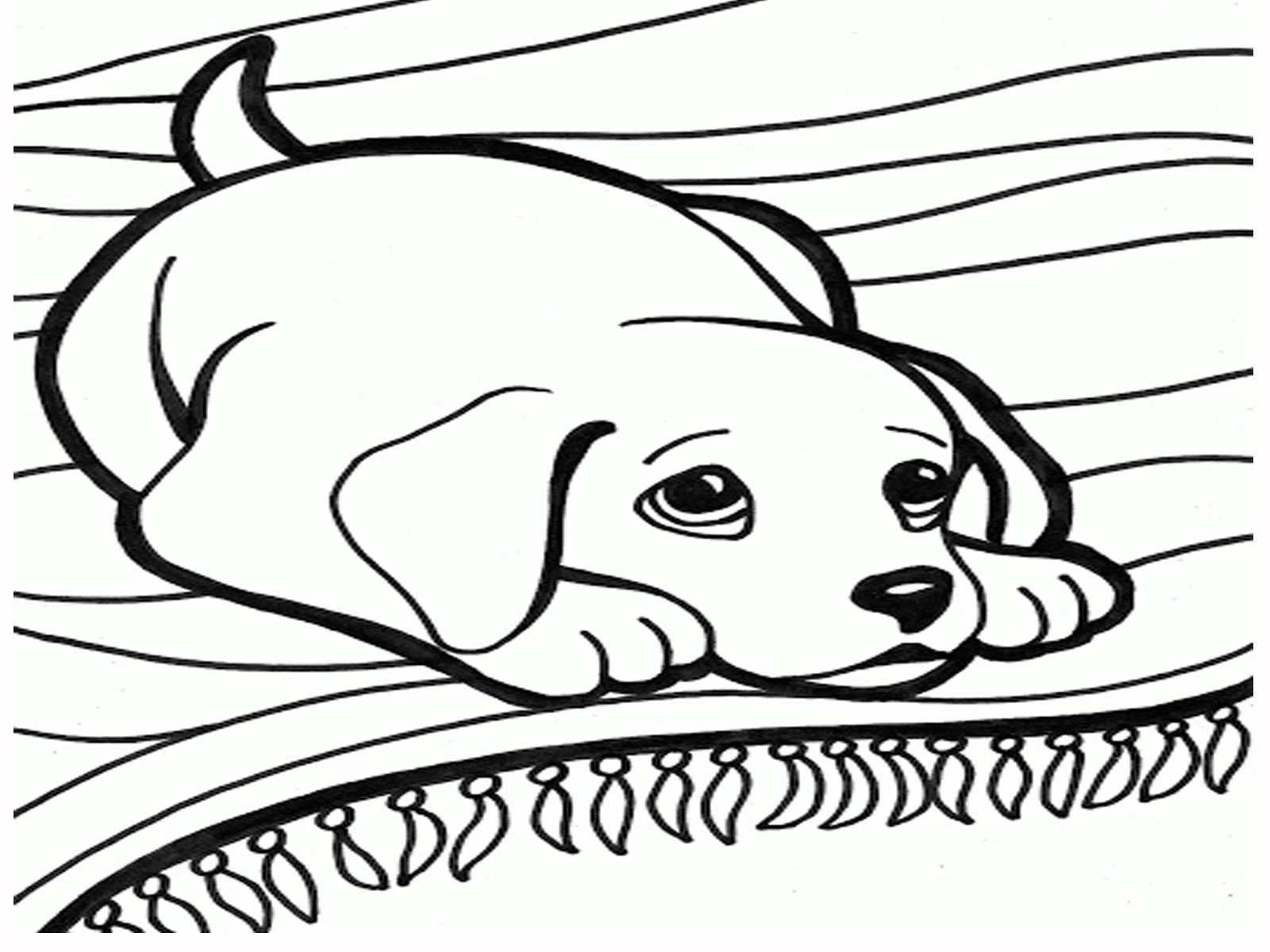 Dog Cartoon And Coloring Pages