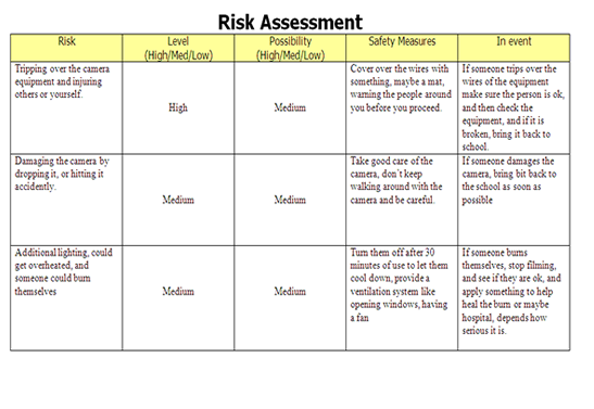risk benefit analysis template