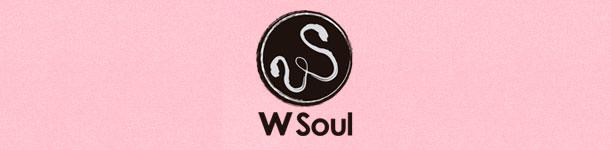 Blog Wsoul