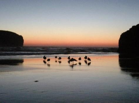 Amanecer desde la playa de Borizu (Celorio)