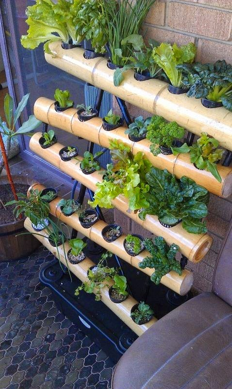 Bamboo vertical gardens and balcony wall gardens for Balcony vertical garden ideas