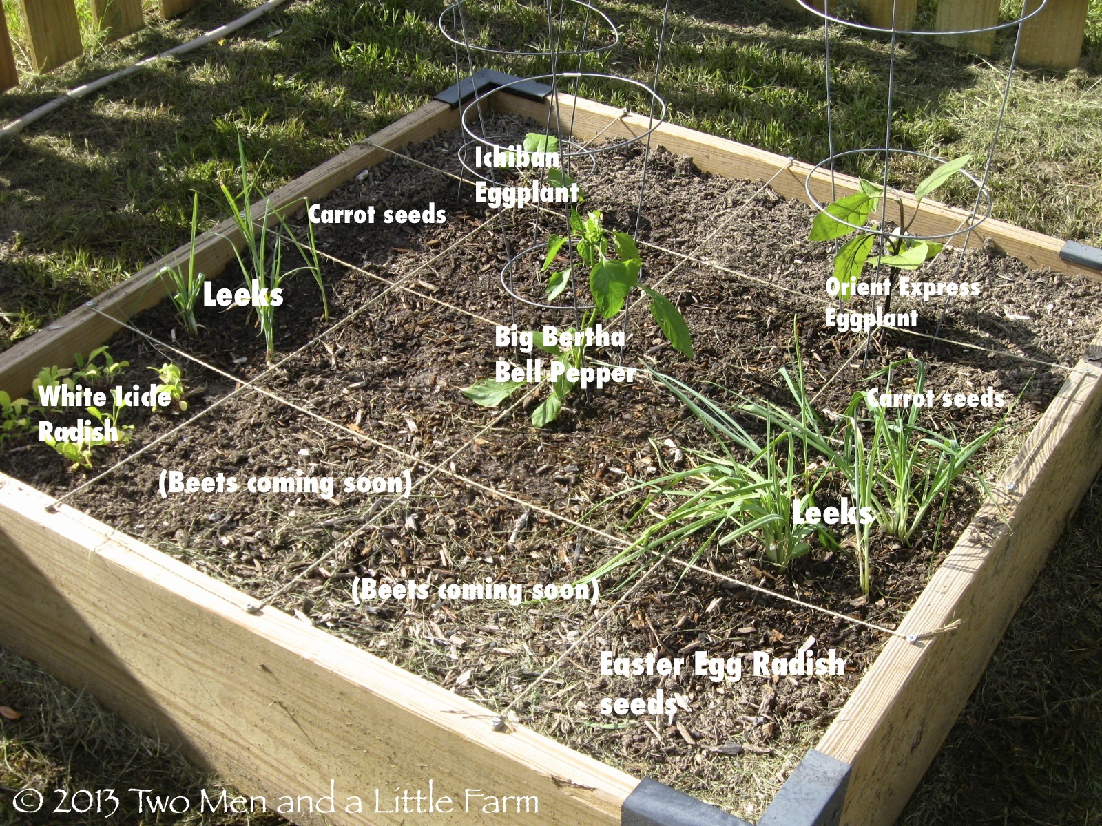 4x4 Raised Bed Square Foot Garden